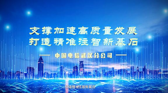 中国电信-基石行动
